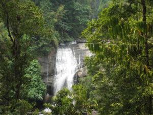 Der zweite Wasserfall der Tour hat etwa 40 m Fallhöhe, ist dafür aber schön in den Dschungel eingebettet.